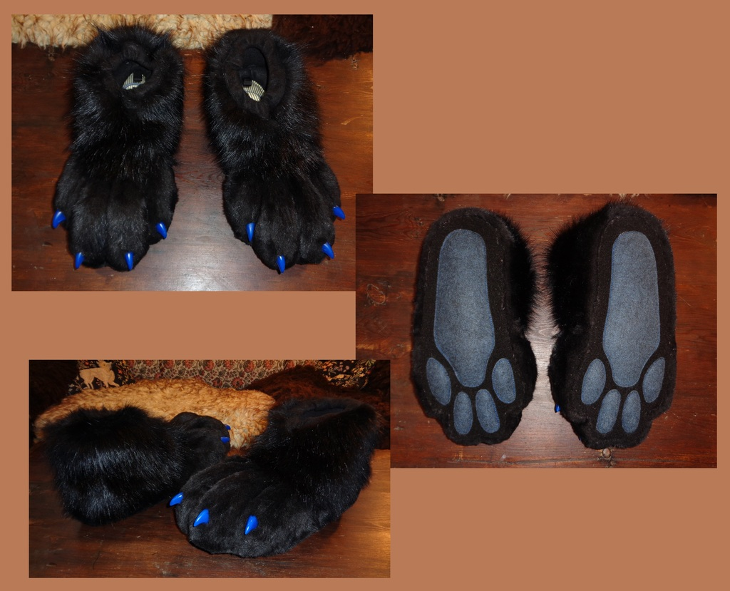 2nd Indoor Feetpaws 1/2