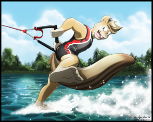 Commission: Look Ma, No Skis!