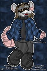 Oh, Possum Friendo!