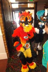 Furry Meet Pictures 14 (Part 58)