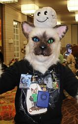 Cat Wirez