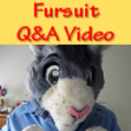 Question and Answer video with Peter the Cat -repost-