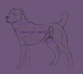 Central Asian Shepherd [Sketch]