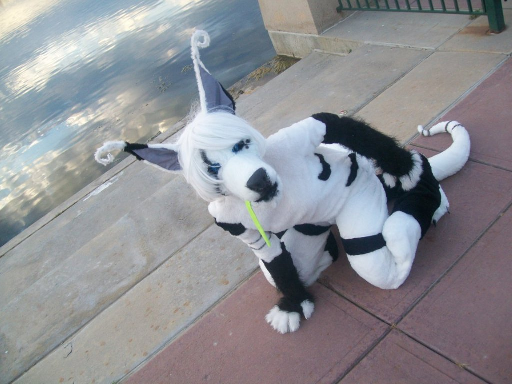 Rowdy fursuit crouched