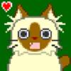 avatar of Foveri