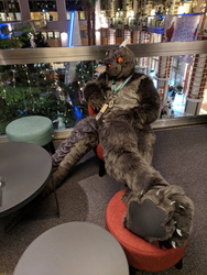 NFC2019 ''Just Chilling Part 2''