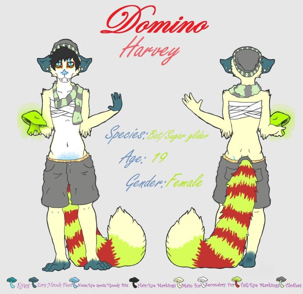 Domino Harvey Ref