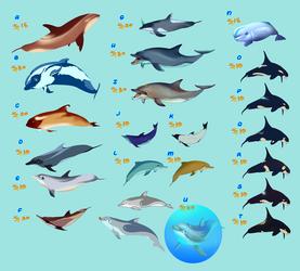 Dolphin Sale Dump (OPEN)