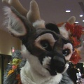 Friday Fursuit Madness: Cameras Everywhere!