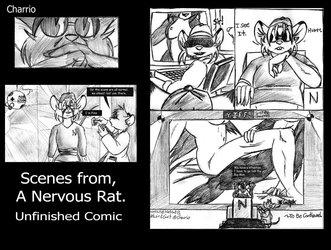 Random Scenes from Nervous Rat
