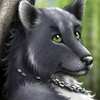 avatar of ChazWolf