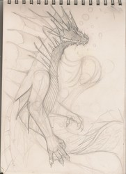 Sea Dragon [CM] - Base Sketch