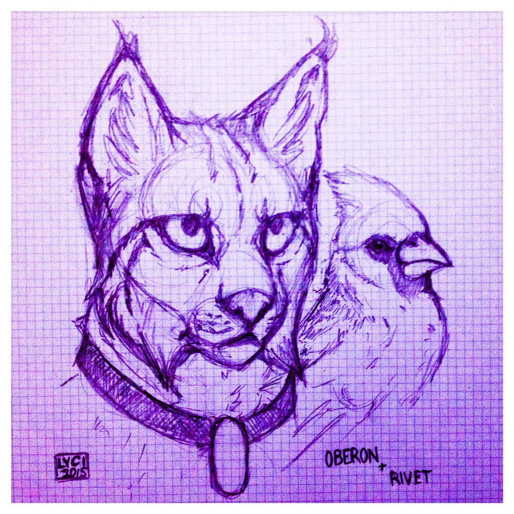 Oberon Sketch