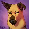 avatar of Stary