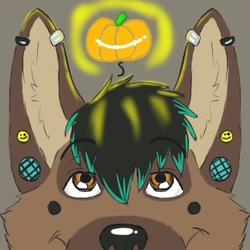 Pumpkins?!
