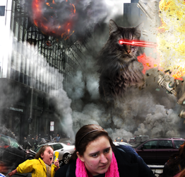 Cat Attack Final