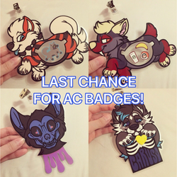 LAST CHANCE FOR AC2018 BADGES