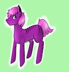 Sai Pony