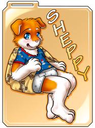 cms243/ Badge: Sheppy