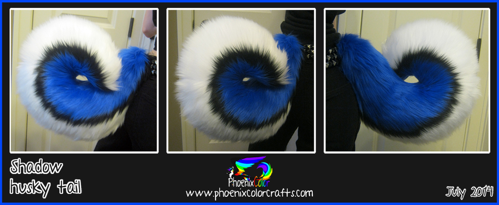 Most recent image: Shadow husky tail