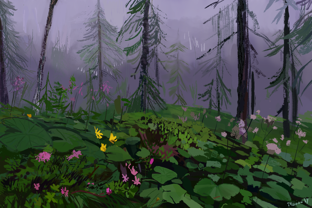 Featured image: Forest bg practice