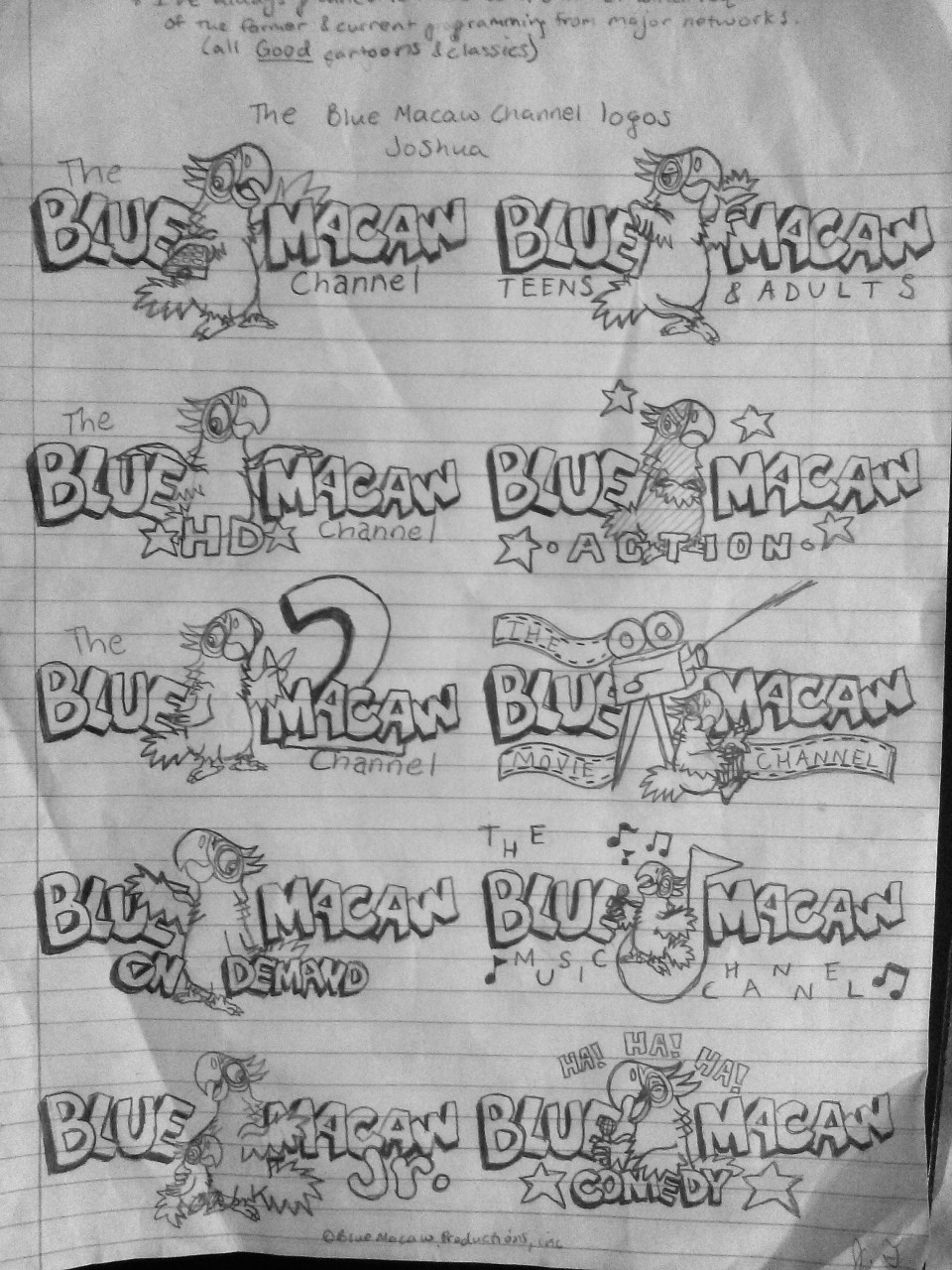 The Blue Macaw Channel Logo Bugs - Joshua