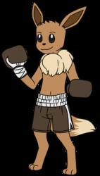 Eevee Boxing
