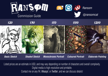 Commission Guide: Now Open for Commissions!