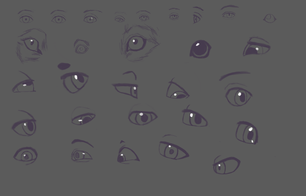 Eye shapes study