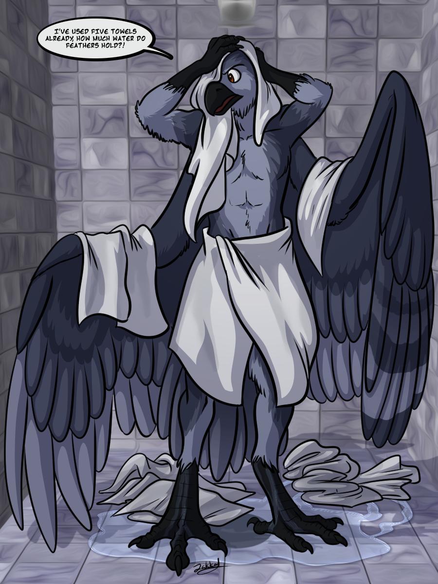 Most recent image: Bird World Problems: Showers