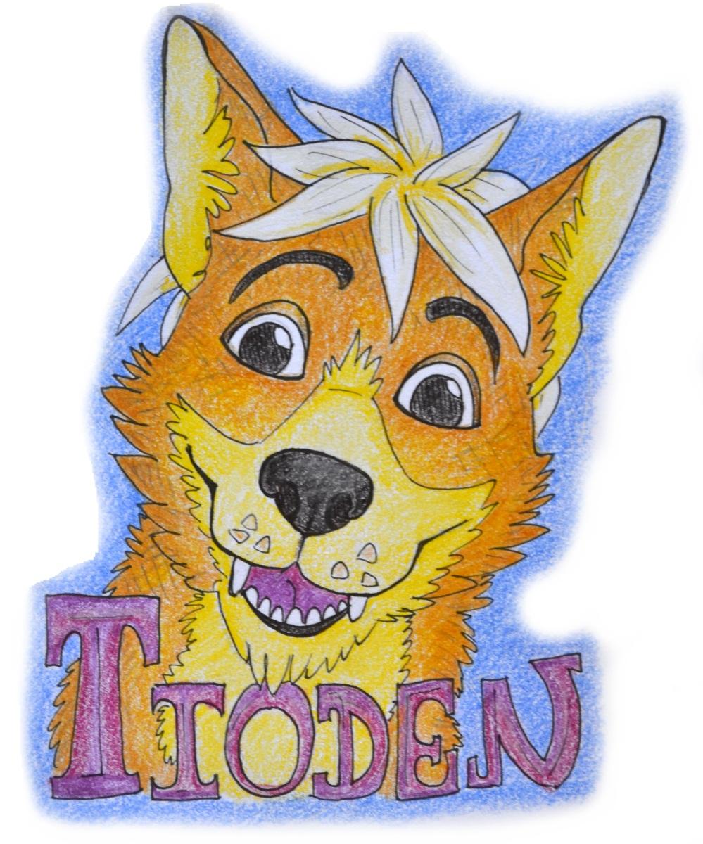 Tioden badge (trade)