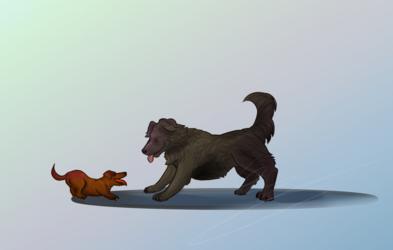 Pup Friends
