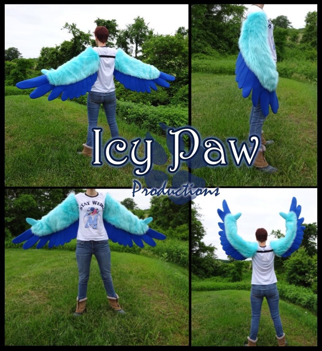 Blue on blue arm wings