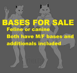 BASES FOR SALE