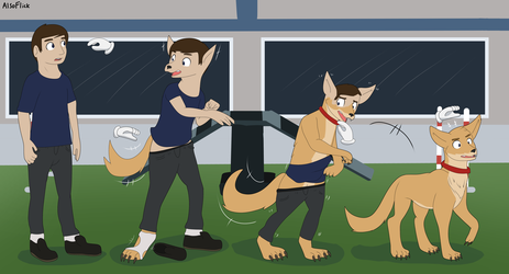 Dog Day (Transformation Sequence)