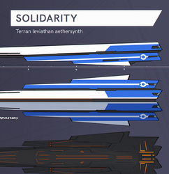 Solidarity anatomy ref