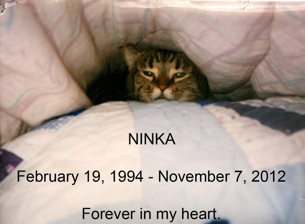 RIP Ninka