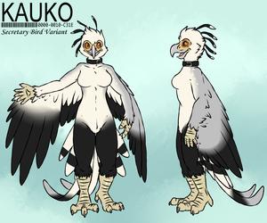 Kauko: Secretary Bird Variant [Clean] by Aggrobadger
