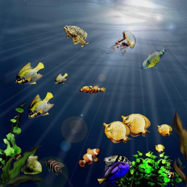 Underwater: Tropical Sea