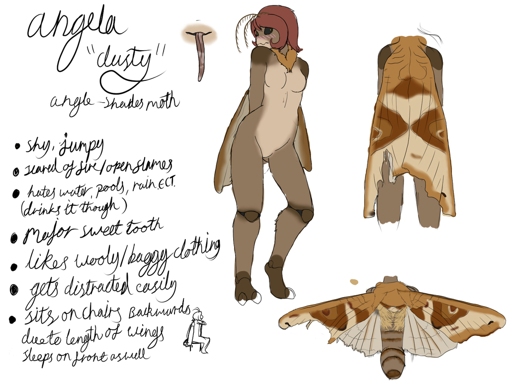 moth oc concept