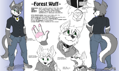 Forest Reference Sheet (2019)