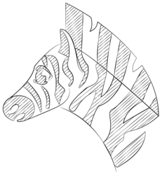 Line Zebra