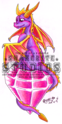 Spyro: Wishin' on a gem