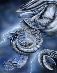 .Storm Dragon.