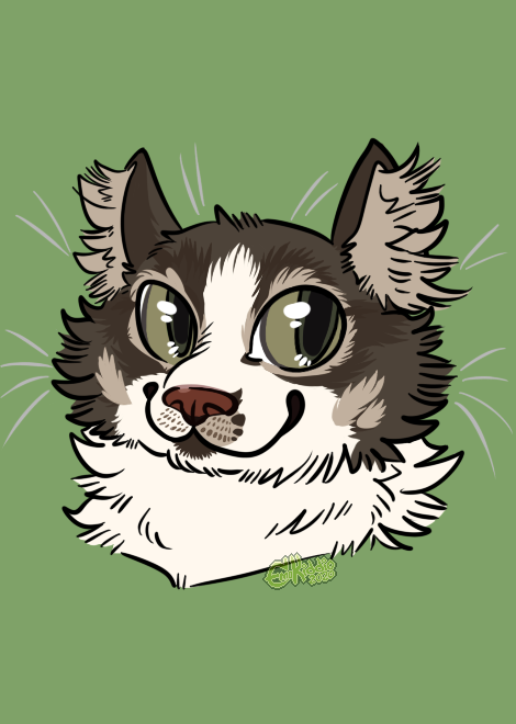 Most recent image: Kludge Cat