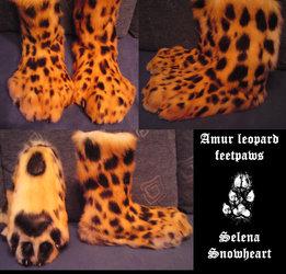 Amur leopard feetpaws