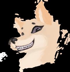 A Winning Smile