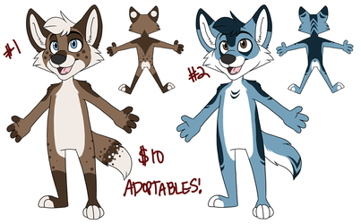 Canine Adoptables!