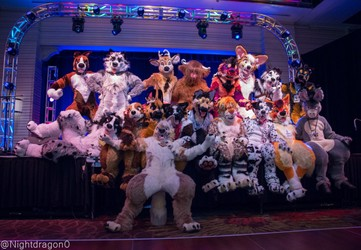 Biggest Little Fur Con & Furlandia 2018 (Convention Video)
