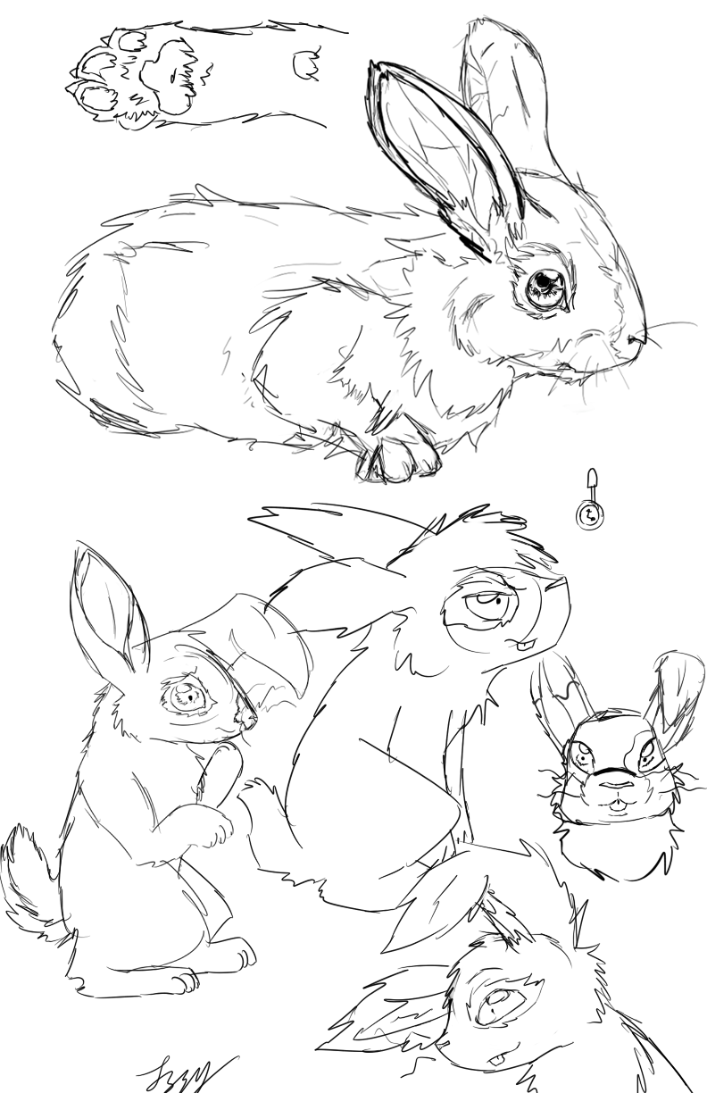 Lapin Sketches
